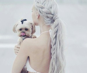 hair, dog, and white image