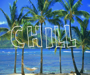 chill, palm trees, and beach image