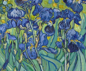 irises, van gogh, and masterpiece image