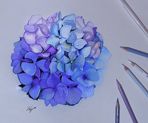 flowers, art, and draw image
