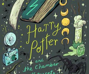harry potter, Harry Potter and the Chamber of Secrets, and potterhead image