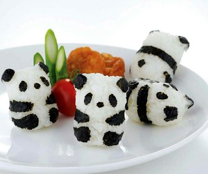 panda, food, and japan image