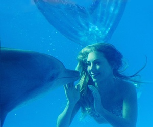 mermaid, dolphin, and ocean image