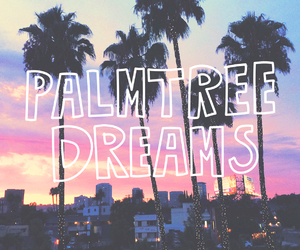 dreams, summer, and palm trees image