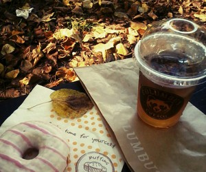 autumn, brown, and donut image