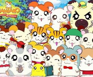 hamtaro and anime image