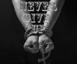 never and surrender image