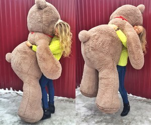 love, bear, and hug image