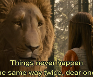 lion, narnia, and quote image