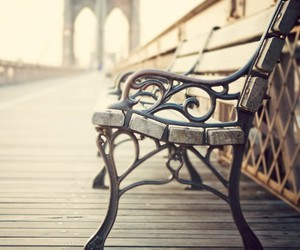 photography, bench, and new york image