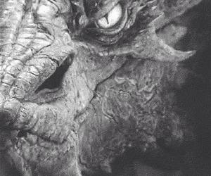 black and white, dark, and dragon image