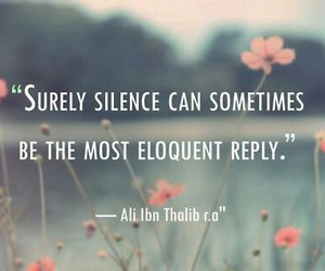 quote, silence, and islam image