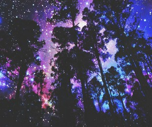 stars, tree, and sky image