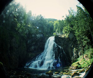 waterfall, nature, and tree image
