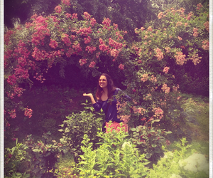 botanic garden, girl, and pink image