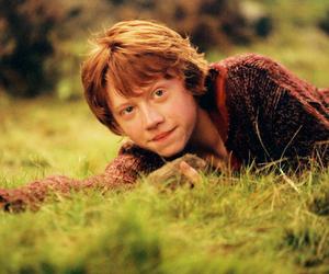 ginger, rony weasley, and ronald weasley image