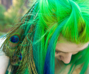 hair, green, and peacock image