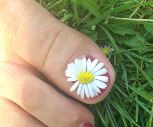 flower, foot, and fresh image