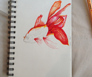 book, goldfish, and pens image
