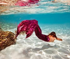 mermaid, pink, and sea image