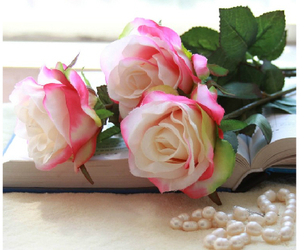 books, romantic, and roses image