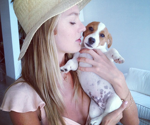 girl, candice swanepoel, and model image