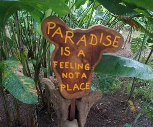 paradise, green, and tropical image