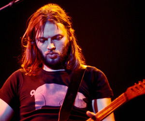 animals, Pink Floyd, and david gilmour image