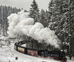 forest, railway, and smoke image