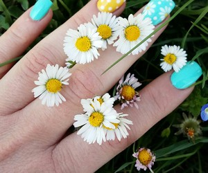 estate, flowers, and nails image
