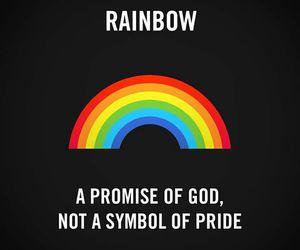 rainbow, bible, and god image