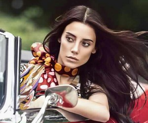 cansudere image
