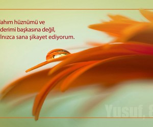Image by İhvan-ı Muslime