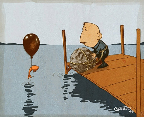 suicide, fish, and funny image