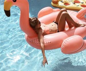 beach, fashion, and flamingo image