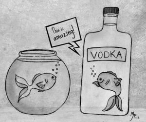vodka, fish, and funny image