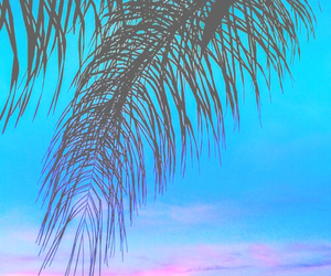 clouds, palm trees, and sky image