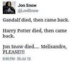 got, game of thrones, and funny image