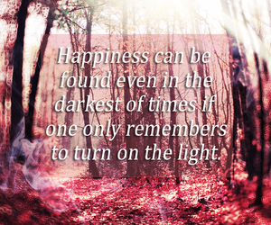 albus dumbledore, positive, and forest image