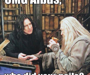 dumbledore, funny, and lol image