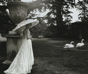 black and white, fashion, and garden image