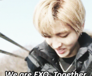 exo, together, and we are one image