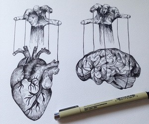 heart, art, and brain image