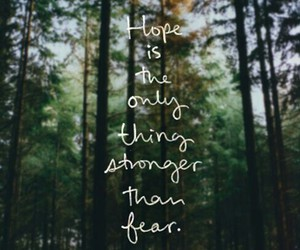 forest, quote, and hope image