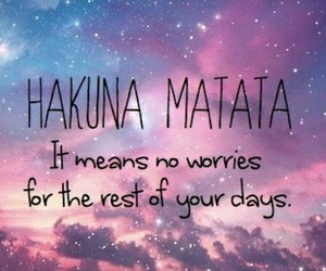 hakuna matata, quotes, and no worries image