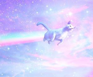 cat, rainbow, and pastel image