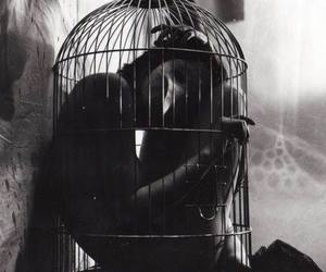 cage, black and white, and mask image