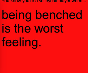 volleyball and volleyball player image