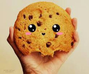 cookie and food image