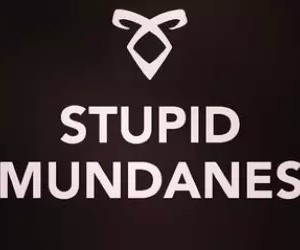 mundanes, shadowhunters, and the mortal instruments image